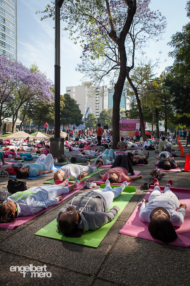 Yoga practitioners on Reforma